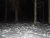2013-01-lokkeohtu-pesa-talus-007