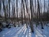 2013-jaan-pesa-talu-talvel-004