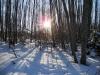 2013-jaan-pesa-talu-talvel-005
