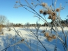talv2013-01-harjumaal-008
